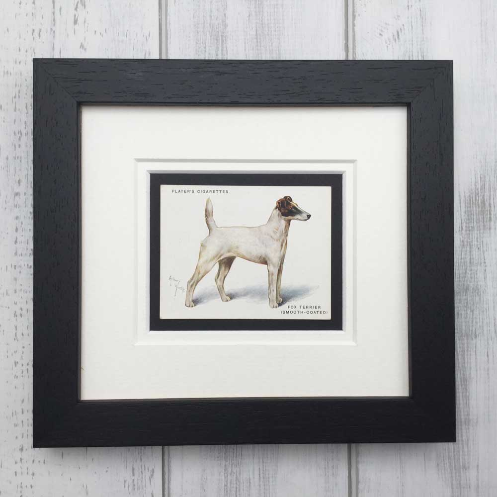 Vintage Gifts for Smooth Fox Terrier Lovers - The Enlightened Hound