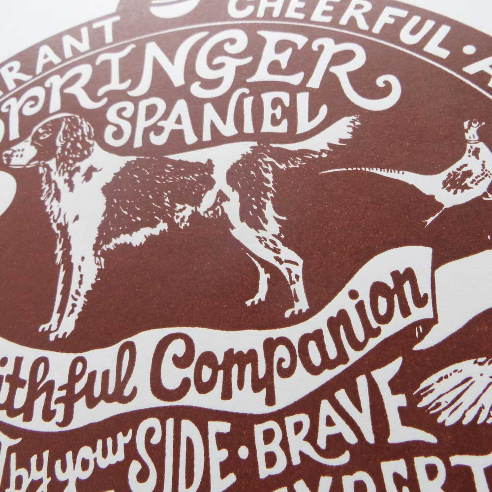 Springer Spaniel dog art prints - Hand lettering & Illustration by Debbie Kendall