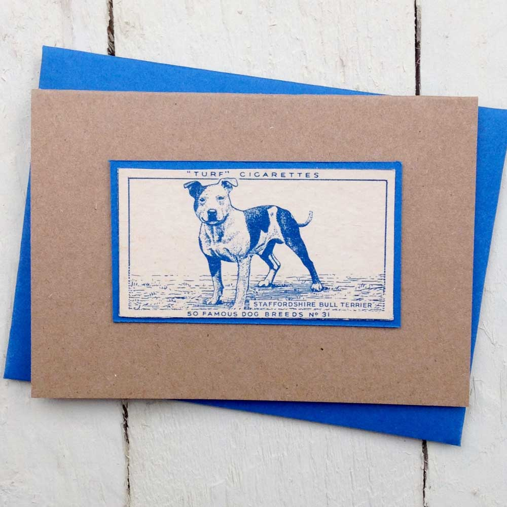 Staffordshire bull terrier Greeting Card- The Enlightened Hound