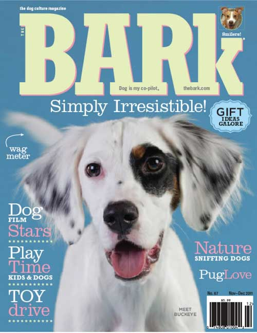 The Bark Magazine cover