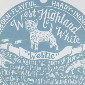 West Highland White Terrier Print Detail by Debbie Kendall