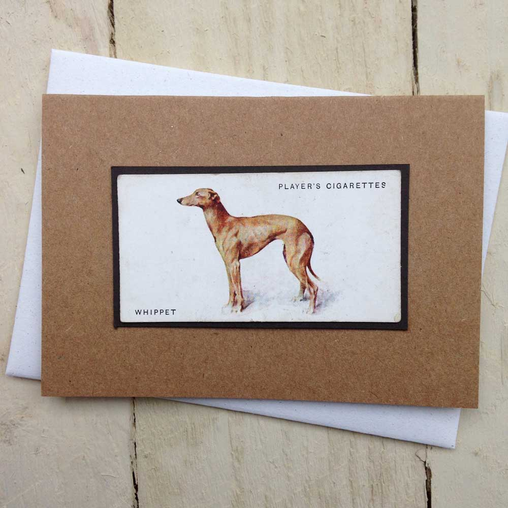 Whippet card - the Enlightened Hound