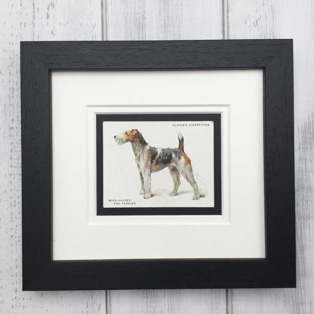 Vintage Gifts for Wire Fox Terrier Lovers - The Enlightened Hound