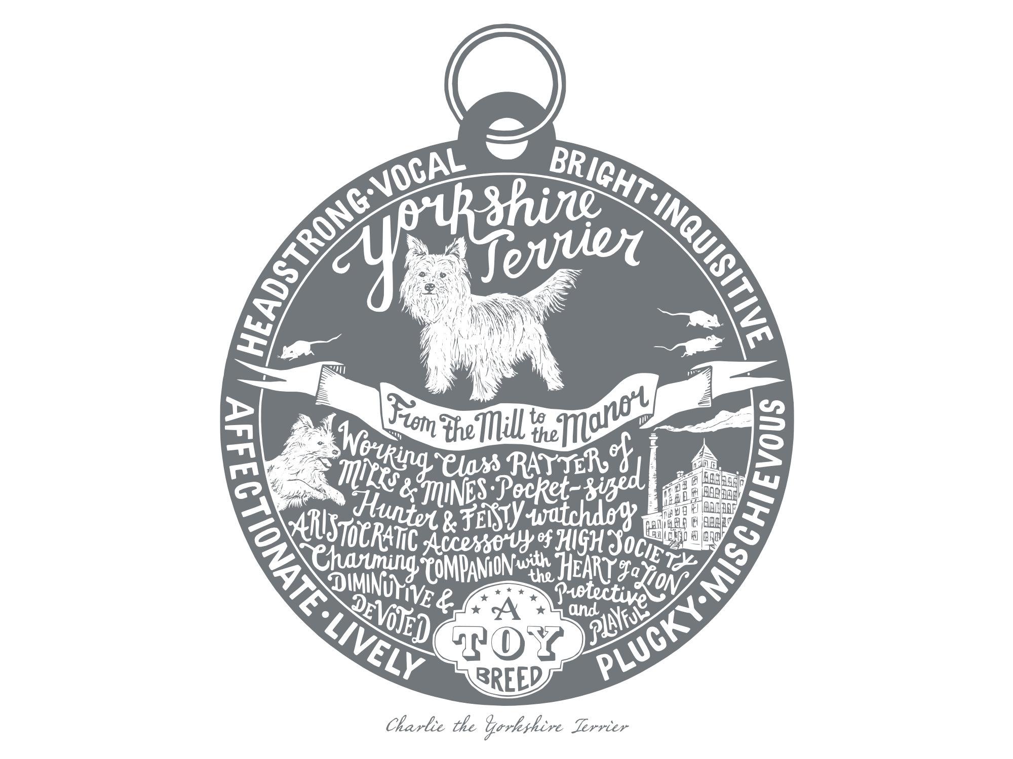 Yorkshire terrier prints - Hand lettering & Illustration by Debbie Kendall